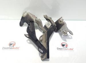 Set balamale capota fata, Renault Laguna 3 coupe