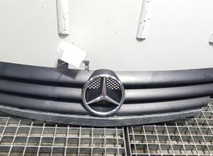 Grila bara fata centrala cu sigla, Mercedes Clasa A (W169) cod A1698800083 (id:355845)